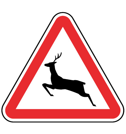 A19b-Animais-selvagens-sinalizacao-vertical-perigo